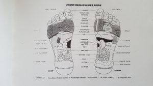 carte-pieds-reflexologie